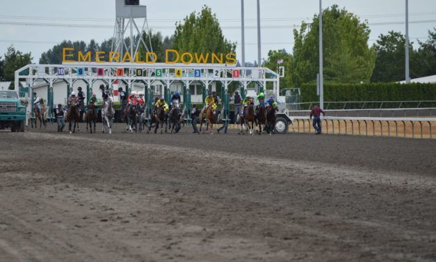 """Mile Day betting review; the """"All"""" button was critical!"""