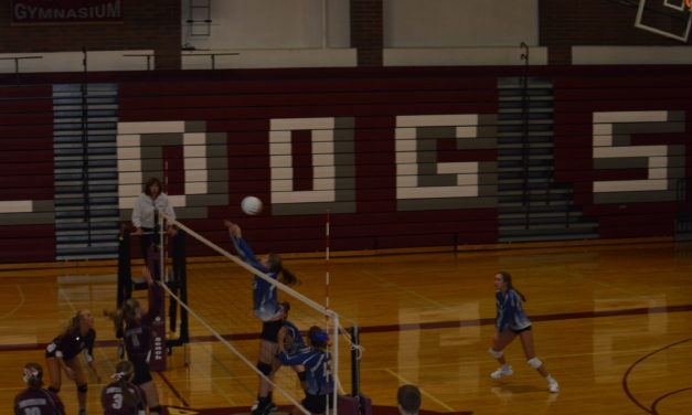 Volleyball: Eagles turn back upset minded Bulldogs in 5 sets