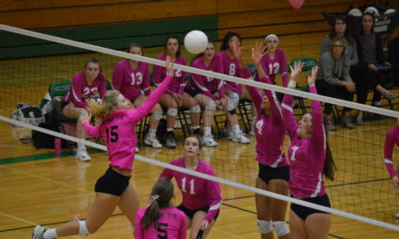 Volleyball: T-Birds not ready to give up control of Evco 2A, sweep Wolves