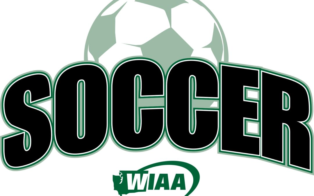 WIAA State Soccer