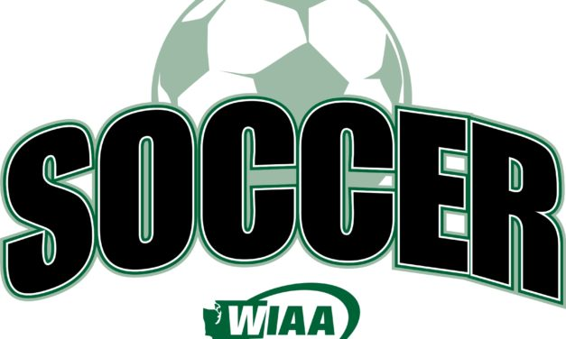 WIAA State Soccer