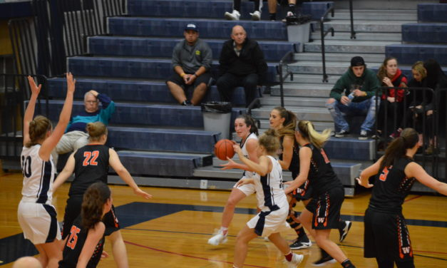 Girls Hoops: Wolves big 4th quarter too much for Panthers