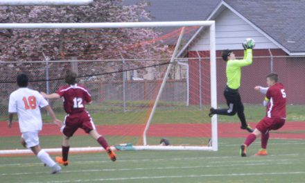 Evco 2A Soccer: Bearcats survive to play another Day with 1-0 win over Tigers