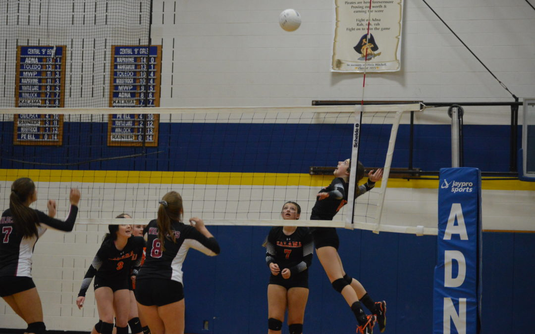 Volleyball: 2A, 1A, 2B, 1B State Brackets and District Results