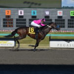 Emerald Downs: Road to the Mile AnyPortinaStorm Dominates Bud Stakes