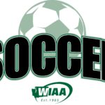 State Soccer Tournament: Finals Four's are set