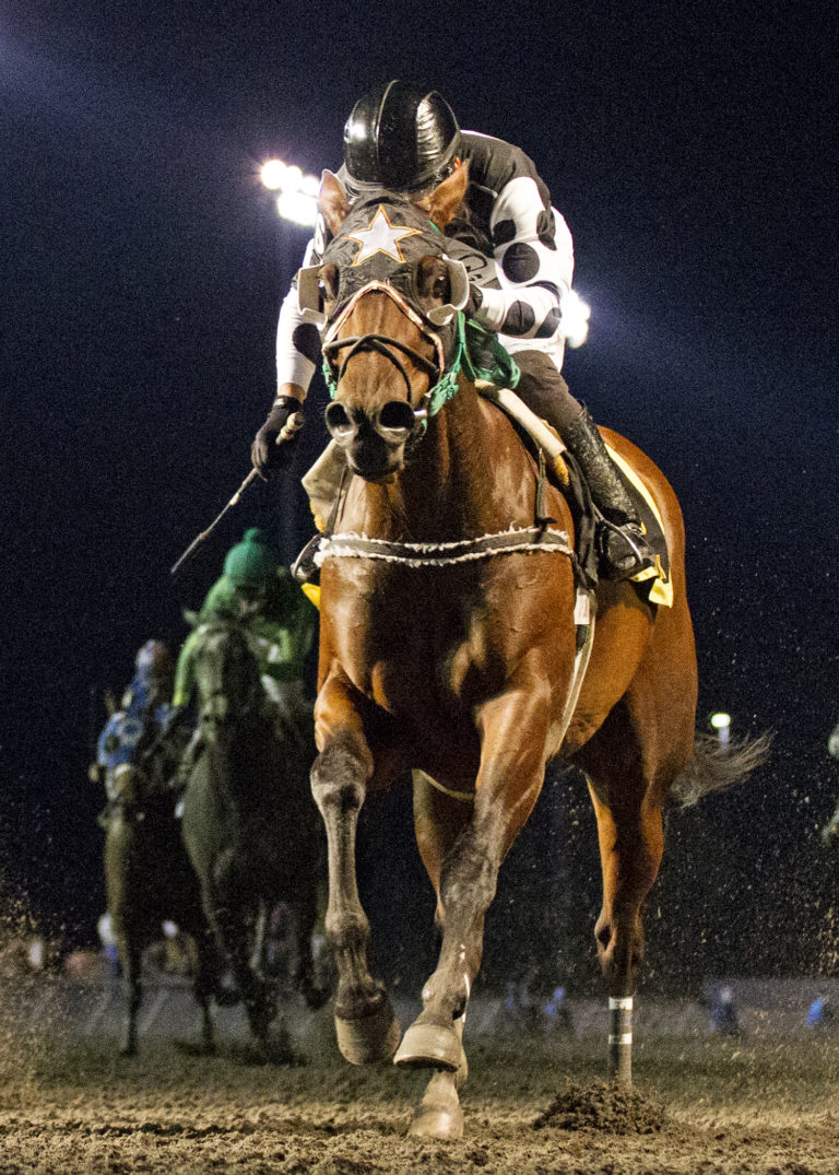 Emerald Downs: 3 Stakes Champions Crowned on Washington Cup Night